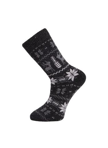Panthzer Panthzer Casual Wool Erkek Çorap Siyah Siyah